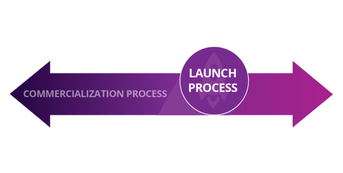 LDNA blog-Difference Between Launching & Commercializing 1200x628-Spot 01